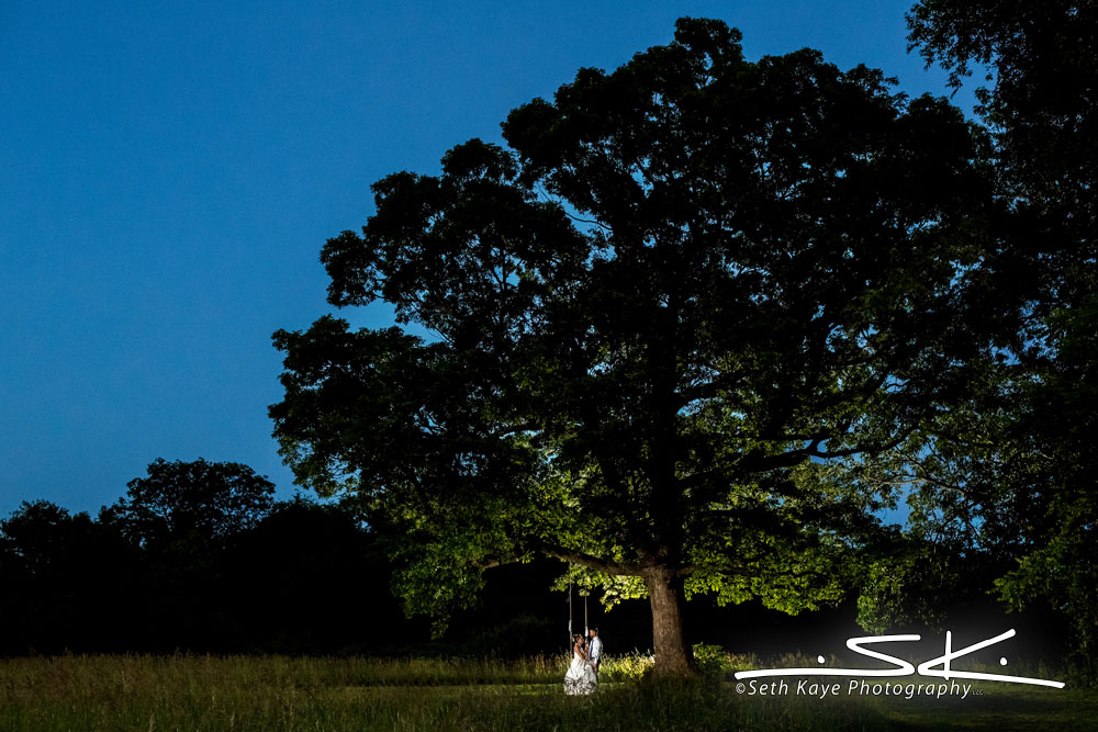 sunset wedding portrait in a field with a big tree